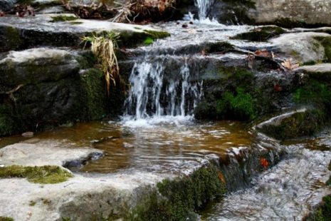 Tributary falls