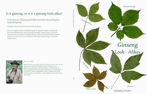 full cover for the ginseng look-alikes guide
