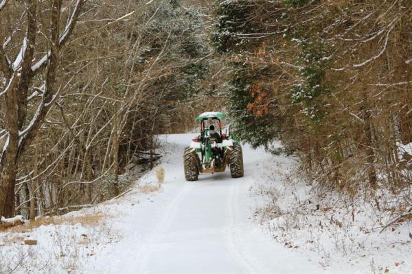 Bringing Hay to Horses in Snow