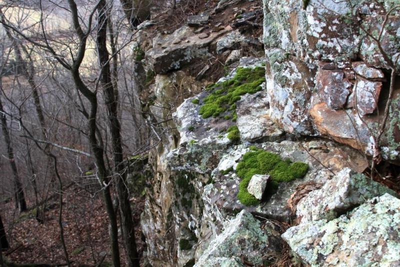 We saw Mossy ledges while hiking to the Corner Bluff.