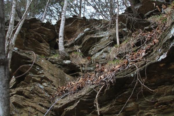 A well-worn path.