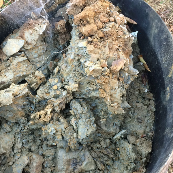 Raw native clay. It's in a large black plastic tub. Not sure of the size, but it's a lot of clay.