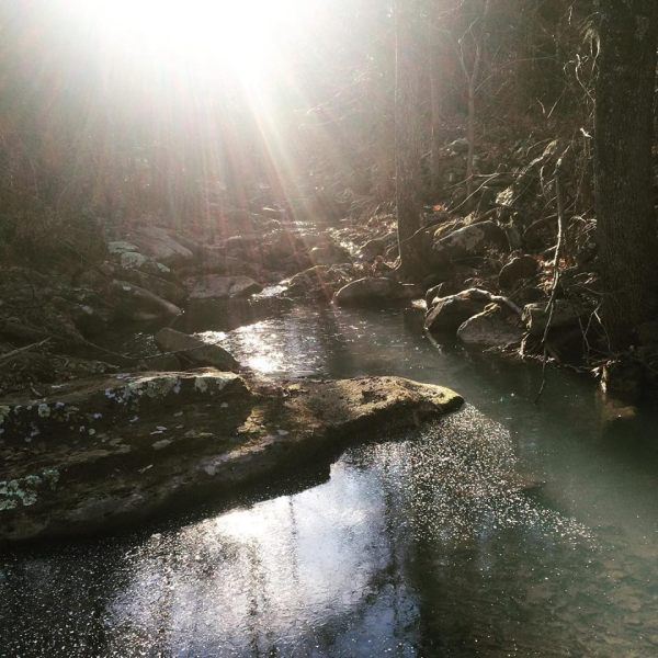 Early morning rays on the creek.