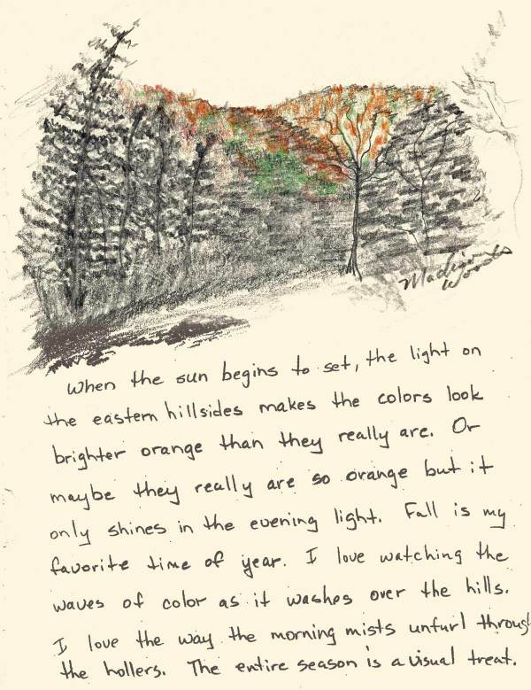 Nature Journal Day 14- Sunlight on the Hillsides