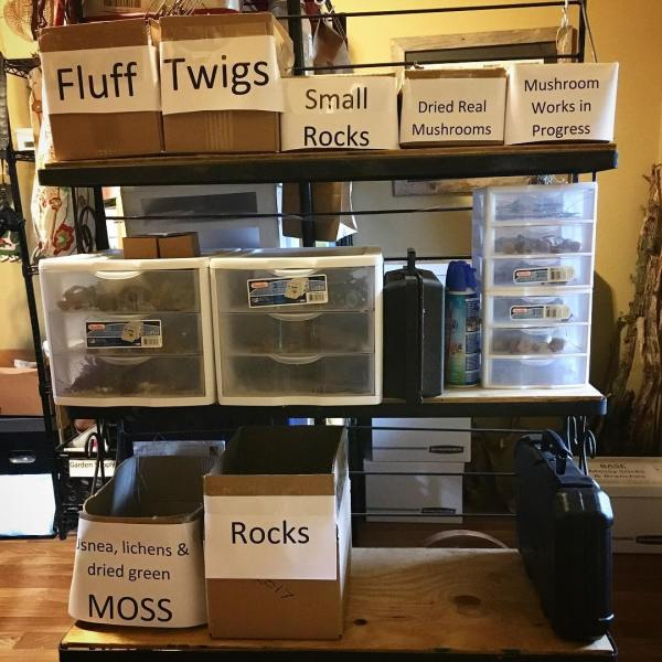 I've been organizing my studio and categorizing my nature art supplies so they're easier to find when I need them.