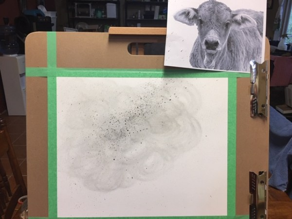 Brahman baby in progress. Starting out with a little smudge and splatter using creek shale and charcoal dust.