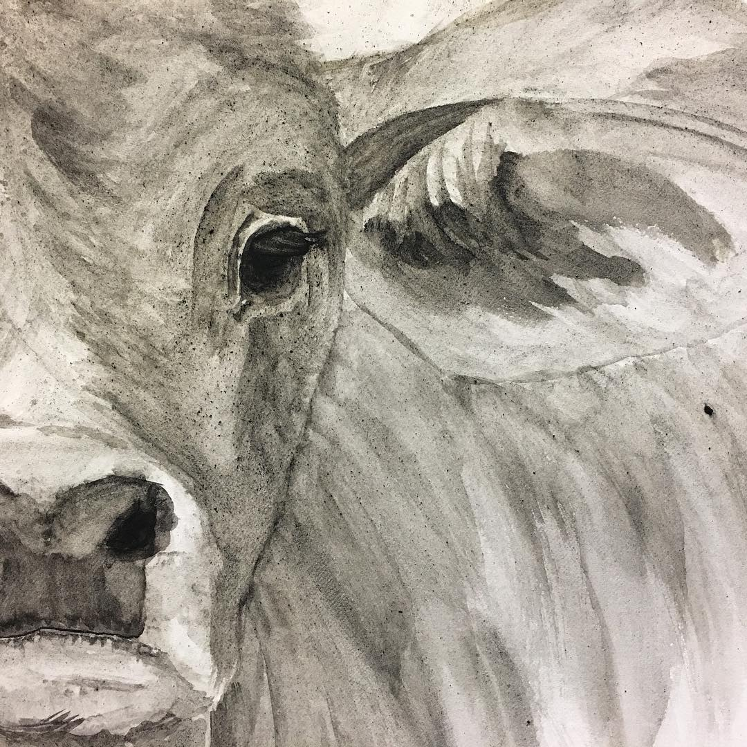 """Working on """"Brahman Baby's"""" eyes and ears."""