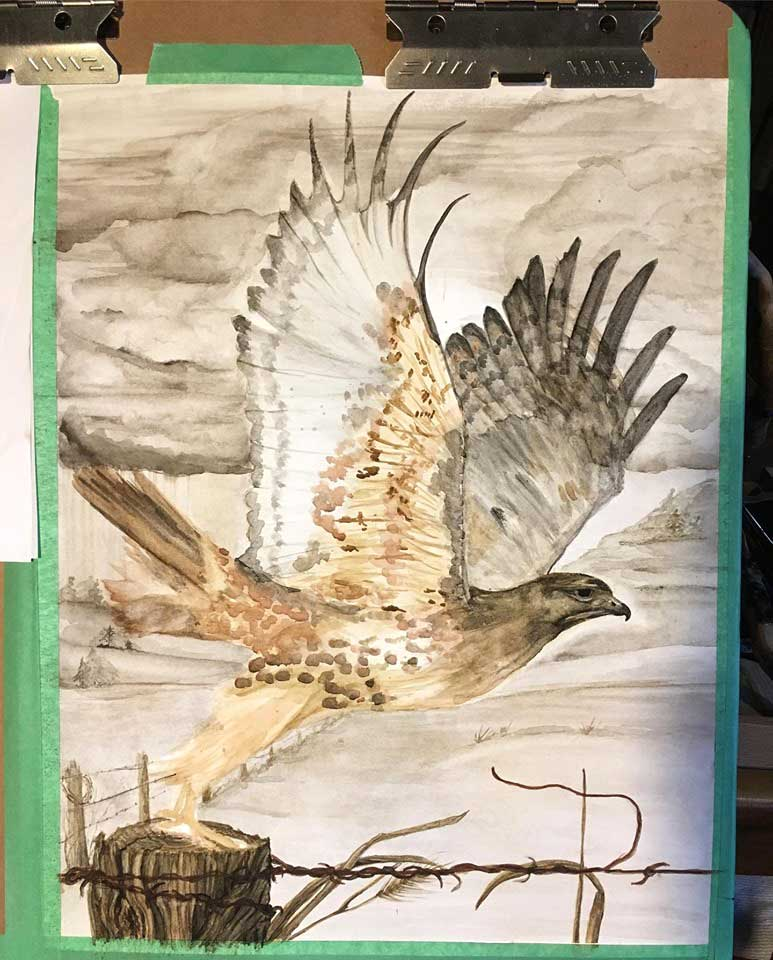 red-tailed hawk painting in progress