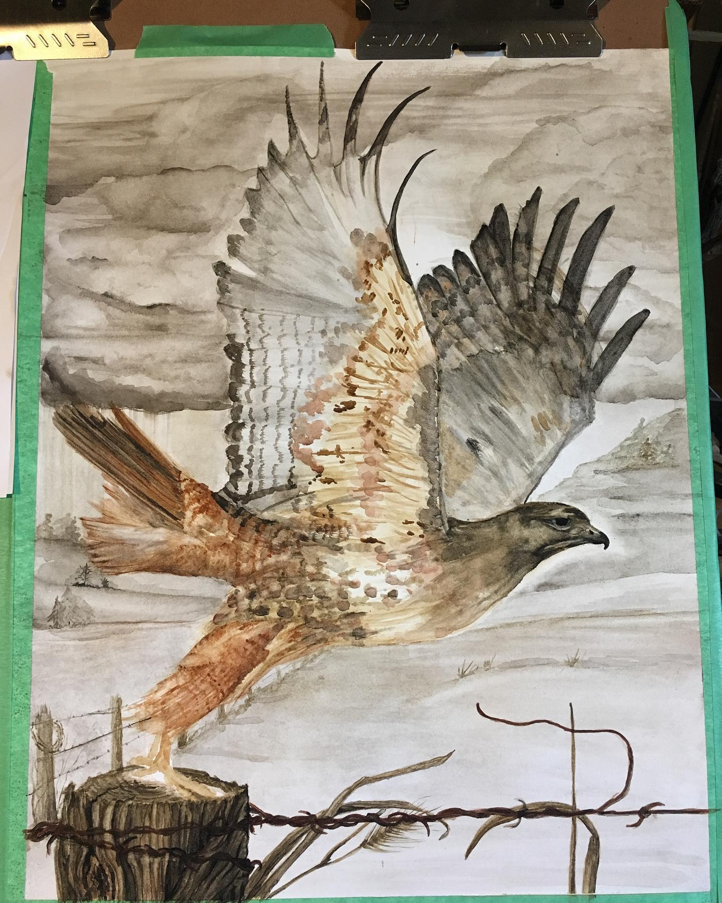 Progress on the red-tailed hawk painting.