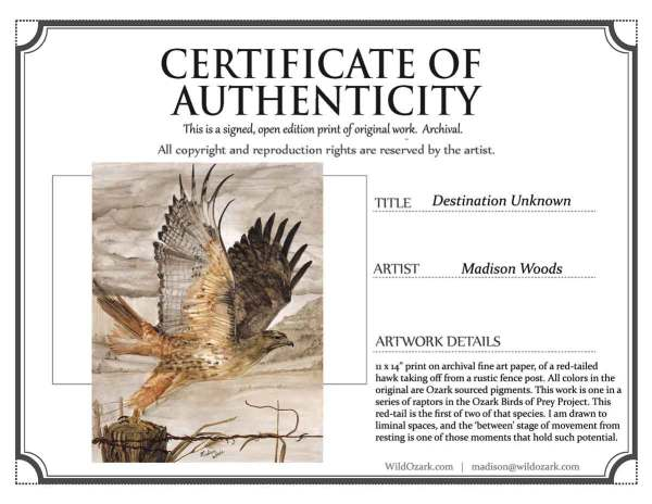 A sample of certificate of authenticity for Destination Unknown.