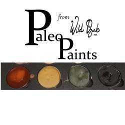 Paleo Paints | Handcrafted Watercolors