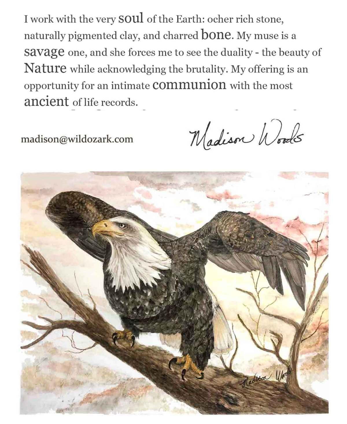 The artist statement for Madison Woods, wildlife and nature artist using Ozark pigments in her art.