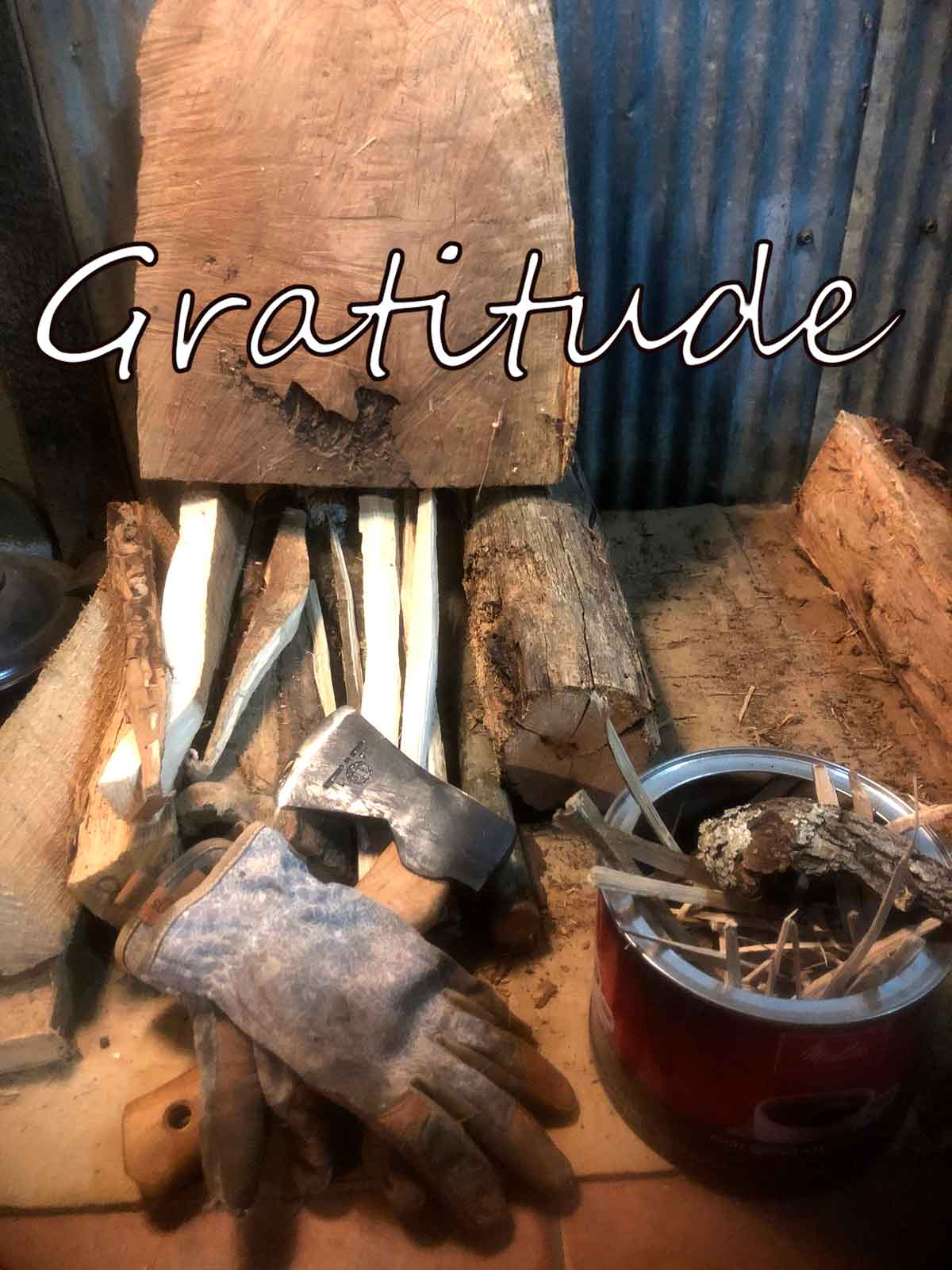 Gratitude to all of my family, friends, and followers and Happy Thanksgiving to you all.