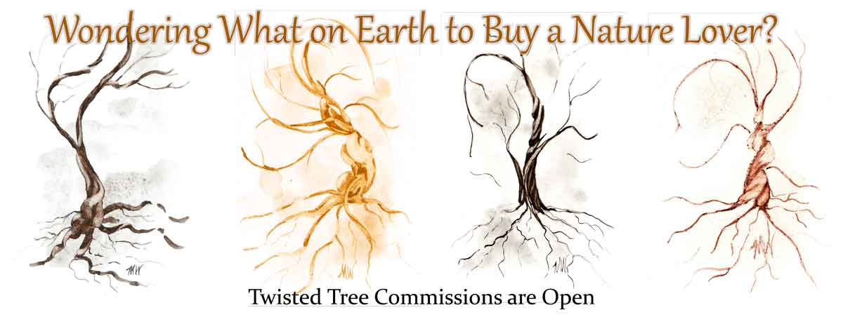 What to buy a nature lover - twisted trees from Madison Woods!