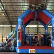 Wild Rides Party Rentals ≡ Product 22
