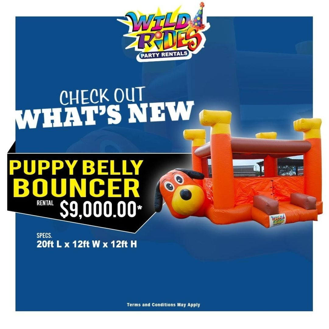 1605276019 900 Check out whats new at Wild Rides WildRides PartyRentals Characters