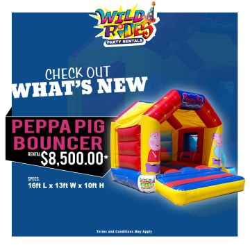 Check out what's new at Wild Rides....... #WildRides #PartyRentals #Characters