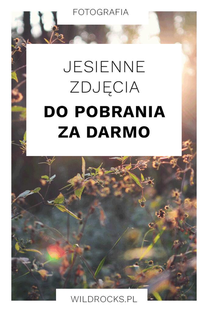 jesienne-zdjecia