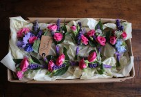 Pink Posy Buttonholes