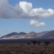 Ndoto Mountains, Lesirikan, Samburu County, Kenya.