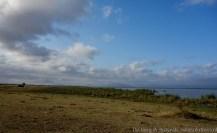 Lake Jipe, Tsavo West National Park
