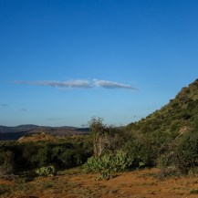 Engwaki, north-west corner Lolldaiga Hills Ranch, Laikipia