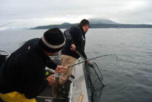 Jeff Netting a Salmon in Sitka, Alaska