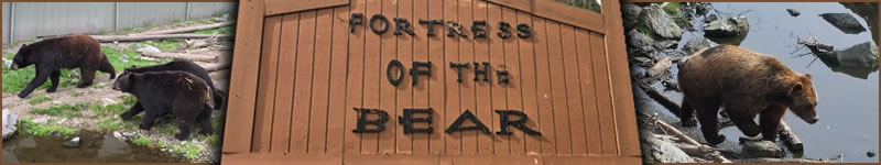 Fortress Of The Bear, Sitka, Alaska