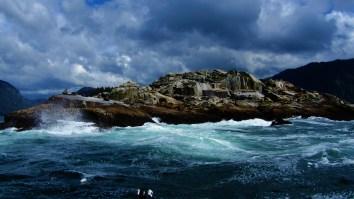Sealion Island near Sitka