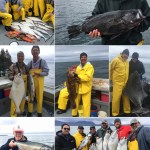 06-01-2017 Nice variety including a record rockfish & a 59 in. releaser halibut!