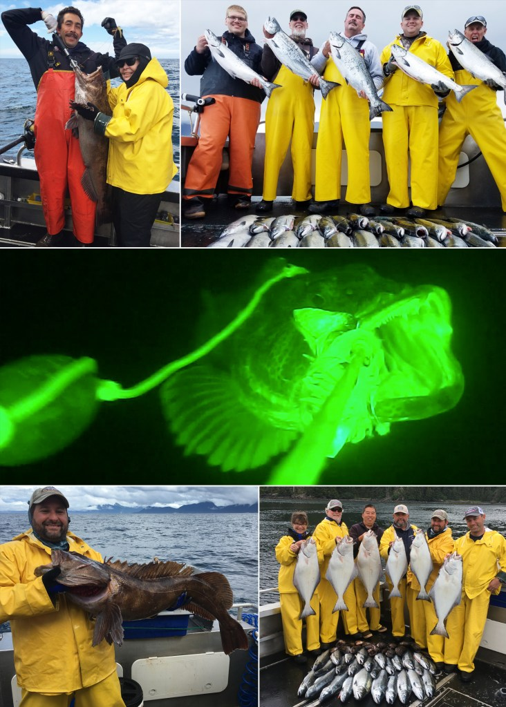 "A Lingcod caught in the ""limelight"" at 200 feet!"