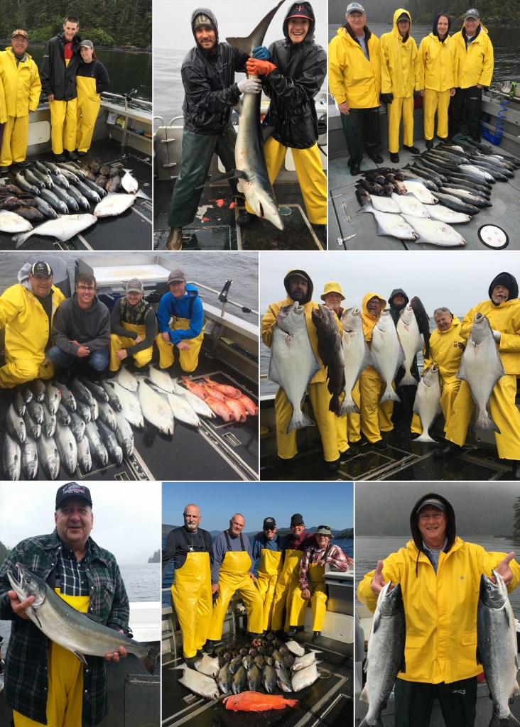 Bountiful catches plus a large blue shark released unharmed!