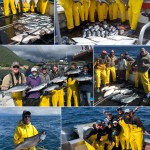 07-17-2018 Good King and Silver salmon action today!