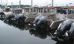 Twin outboard motors
