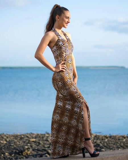 Juno Havana Long Fitted Dress in Animale