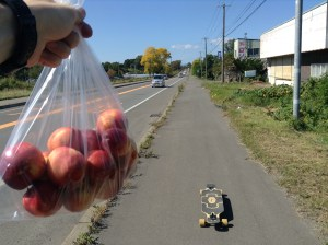 2 Old Ladies and a Bag of Nectarines, Day 7