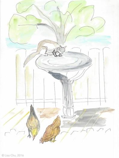 Cat birdbath chickens