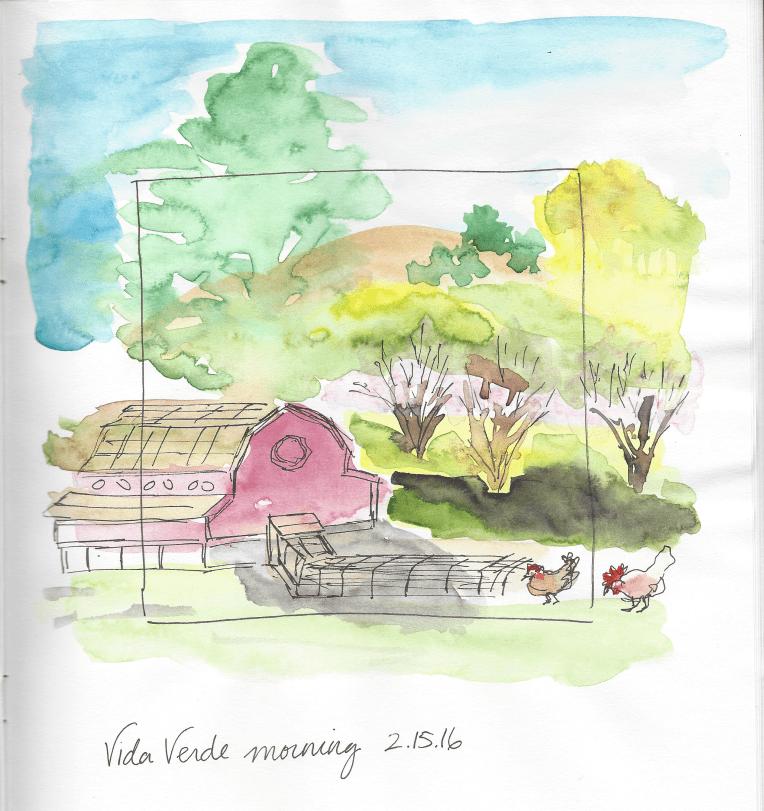 Vida Verde Morning 2.15.16