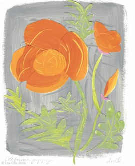 Wildflower Collage Watermark-3