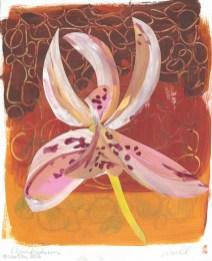 Wildflower Collage Watermark-9