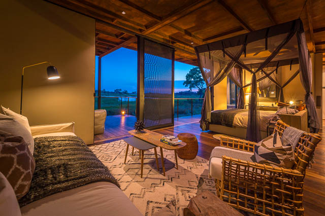 Luxury stay in Okavango