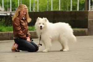 Agila-Bild: Hunde-Nanny Maike mit Feriengast Stuppsi