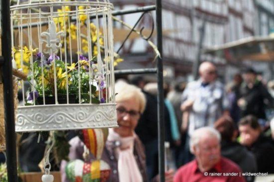 Bunte Blumen (Foto: Rainer Sander)