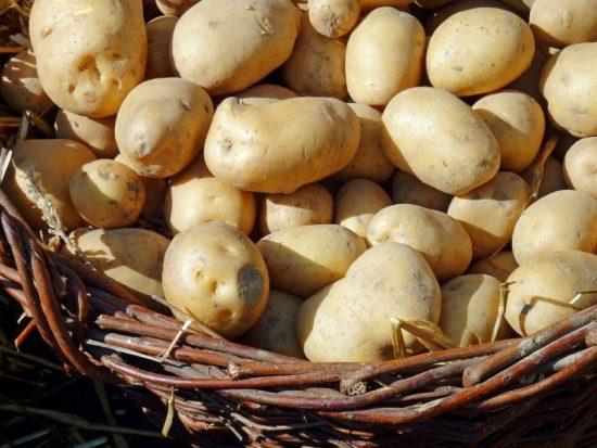 Tolle Knolle! Kartoffelfest in Bad Wildungen