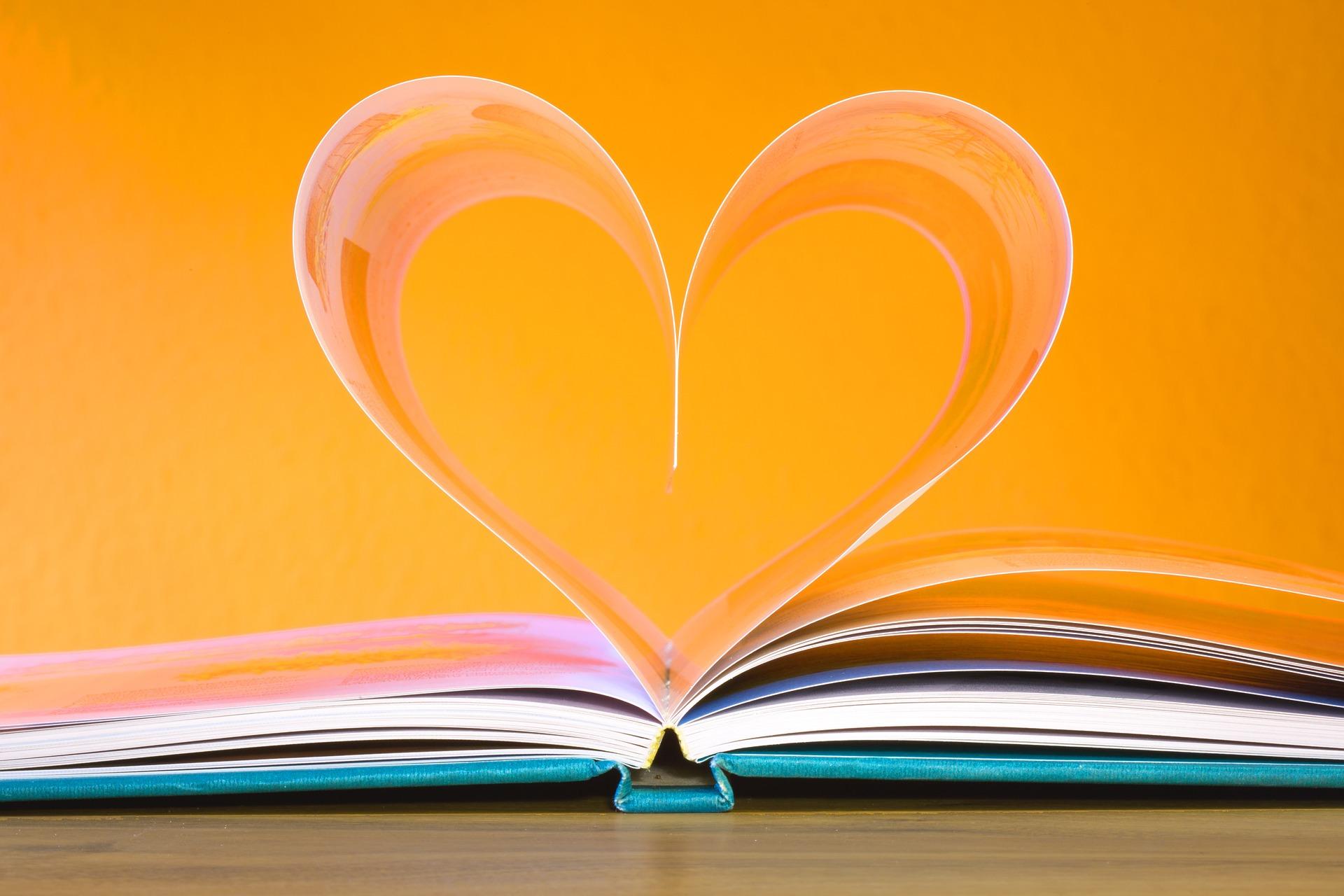 book-748904_1920