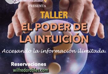 promo intuicion store Hands