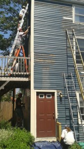Willard Square Home Repair, Painting