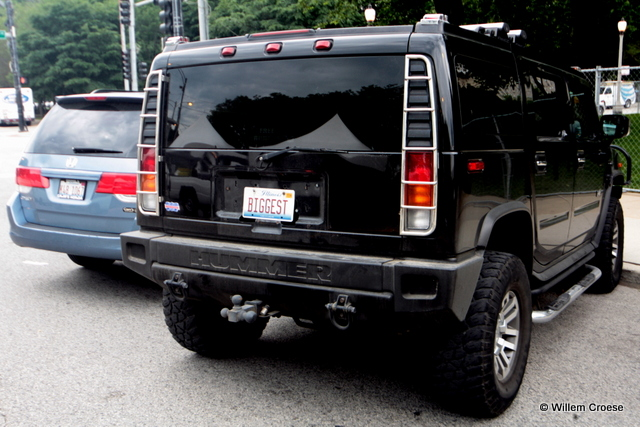 Hummer - Willem Croese