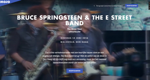 Bruce Springsteen Mojo - Willem Croese