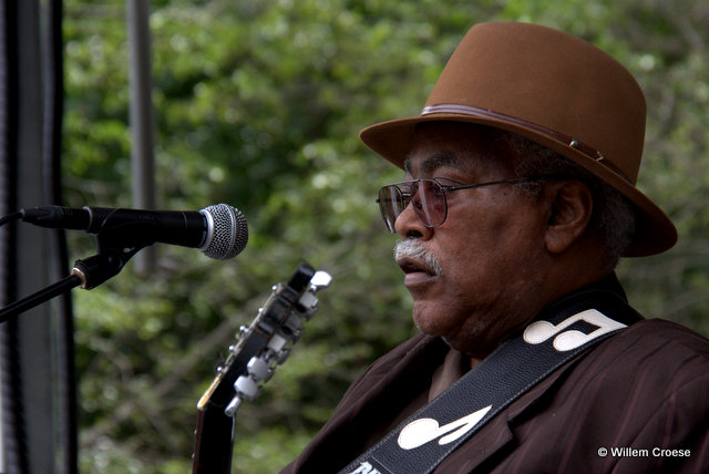 Chicago Blues Festival 2016 - Willem Croese